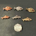Collectors Souvenir Pins